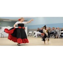 DOG DANCING O FREESTYLE CANINO